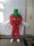 custom strawberry mascot costumes plant fruit walking actor